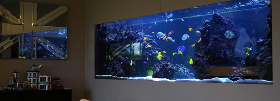 Integrated Bespoke Aquarium.jpg