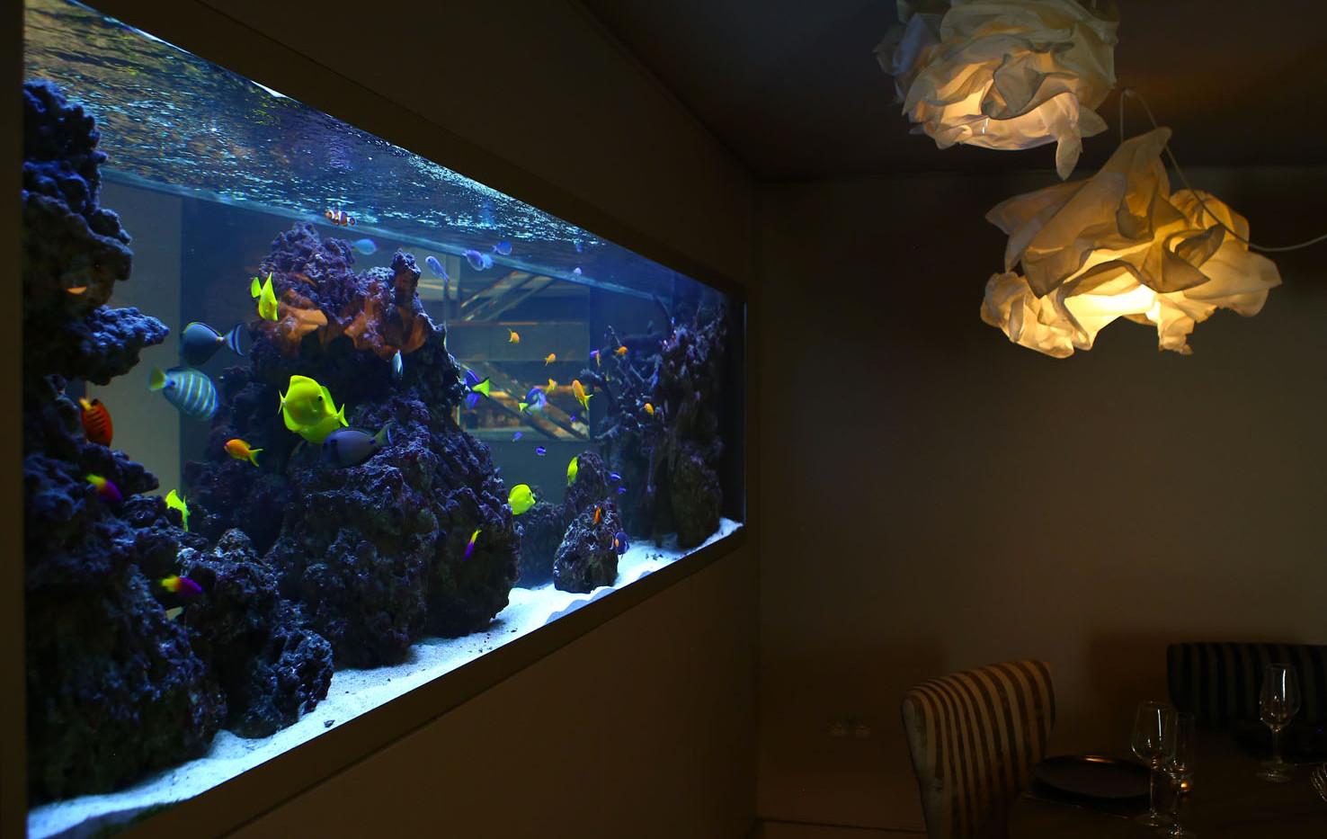 Bespoke aquariums.jpg