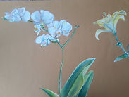 orchid, lily .jpg