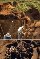 giant-ant-hill.jpg