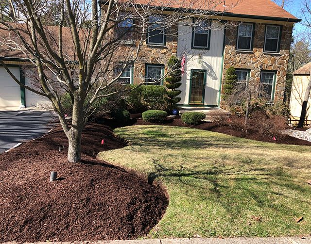 Brown mulch install today looking fresh