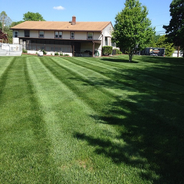 Lawn stripes for days #ATA #hardworkingguys _landscapersnj _mikemarchitto