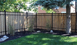 specialty fence.jpg