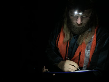 Maine's Nightjar Monitors: meet some of the citizen scientists powering our efforts