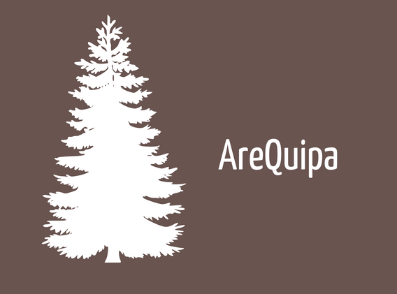 AreQuipa (1).png