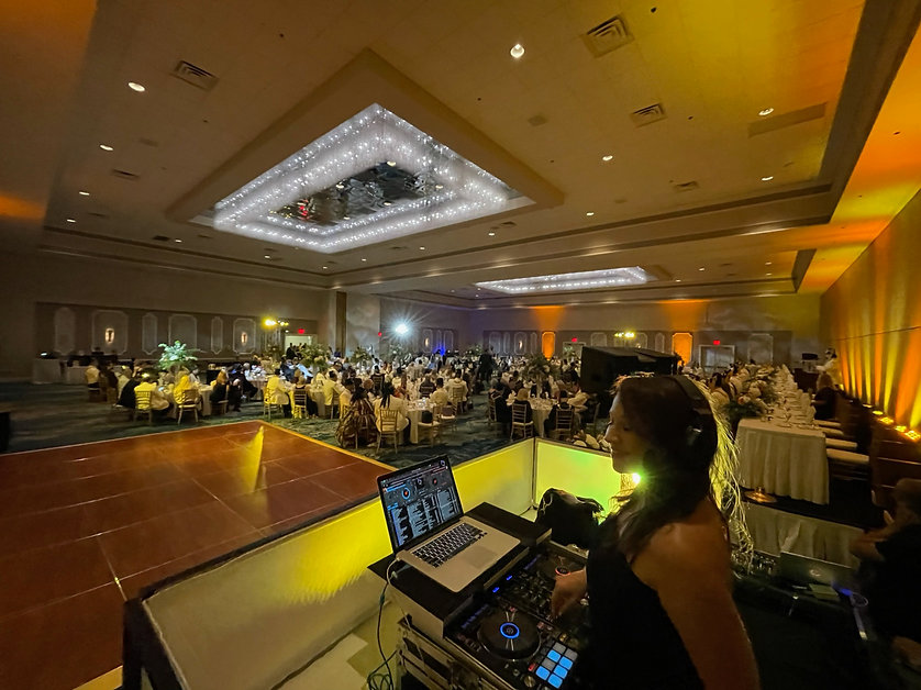DJ Lindsey Leigh | Corporate Event