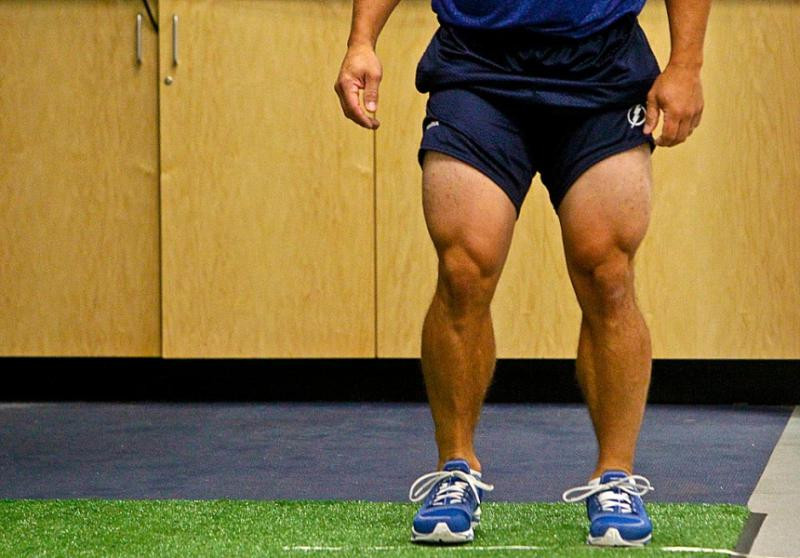 martin st louis, hockey legs