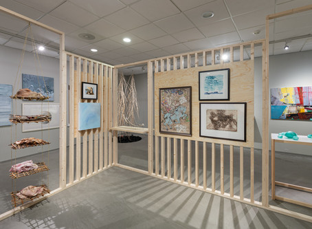 Jubileumsutstilling ved Nordnorsk Kunstnersenter i Svolvær