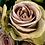 Thumbnail: ROSE GOLD & BASIL