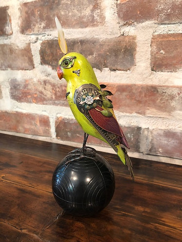 Lime Parrot On Croquet Ball