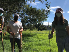 Working with Rotaract reforestation project