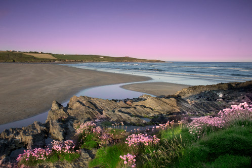 Image result for Inchydoney beach