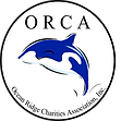 ORCA LOGO AT 7 IN.png