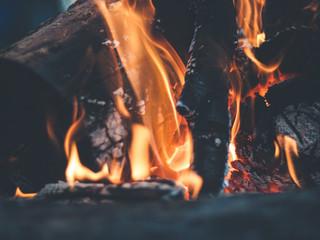 В России ликвидированы лесные пожары на площади свыше 43 тысяч гектаров