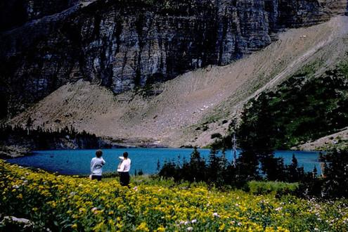 flowers and lake Glacier NP