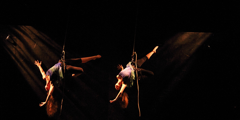 Harness Wall Dancing - Teen and Adults - 9:30am-12:30pm