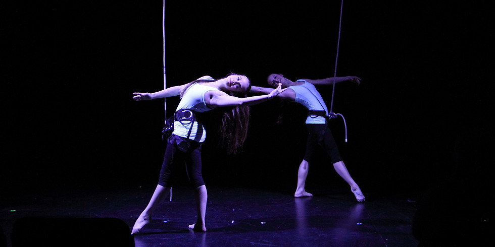 Aerial Dance - Teens and Adults