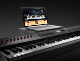 Keyboard with Laptop Blur MIDI.jpg