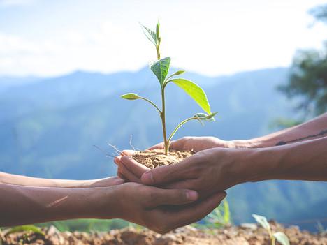 ธุรกิจและความรับผิดชอบต่อสังคม มีเพื่อโลก หรือเพื่อใคร?