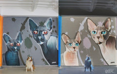 Perros vs gatos negativo