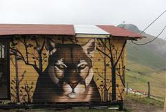 Glamping león