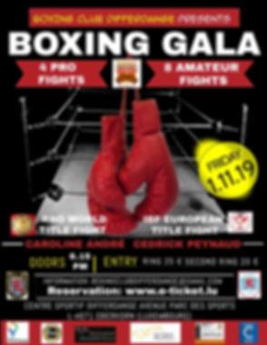 Boxing Night Flyer_edited_edited.jpg
