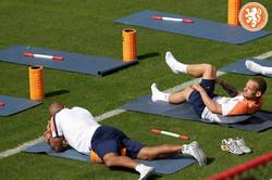 Wesley Sneijder & Nigel de Jong