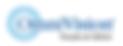logo-omnivision.png