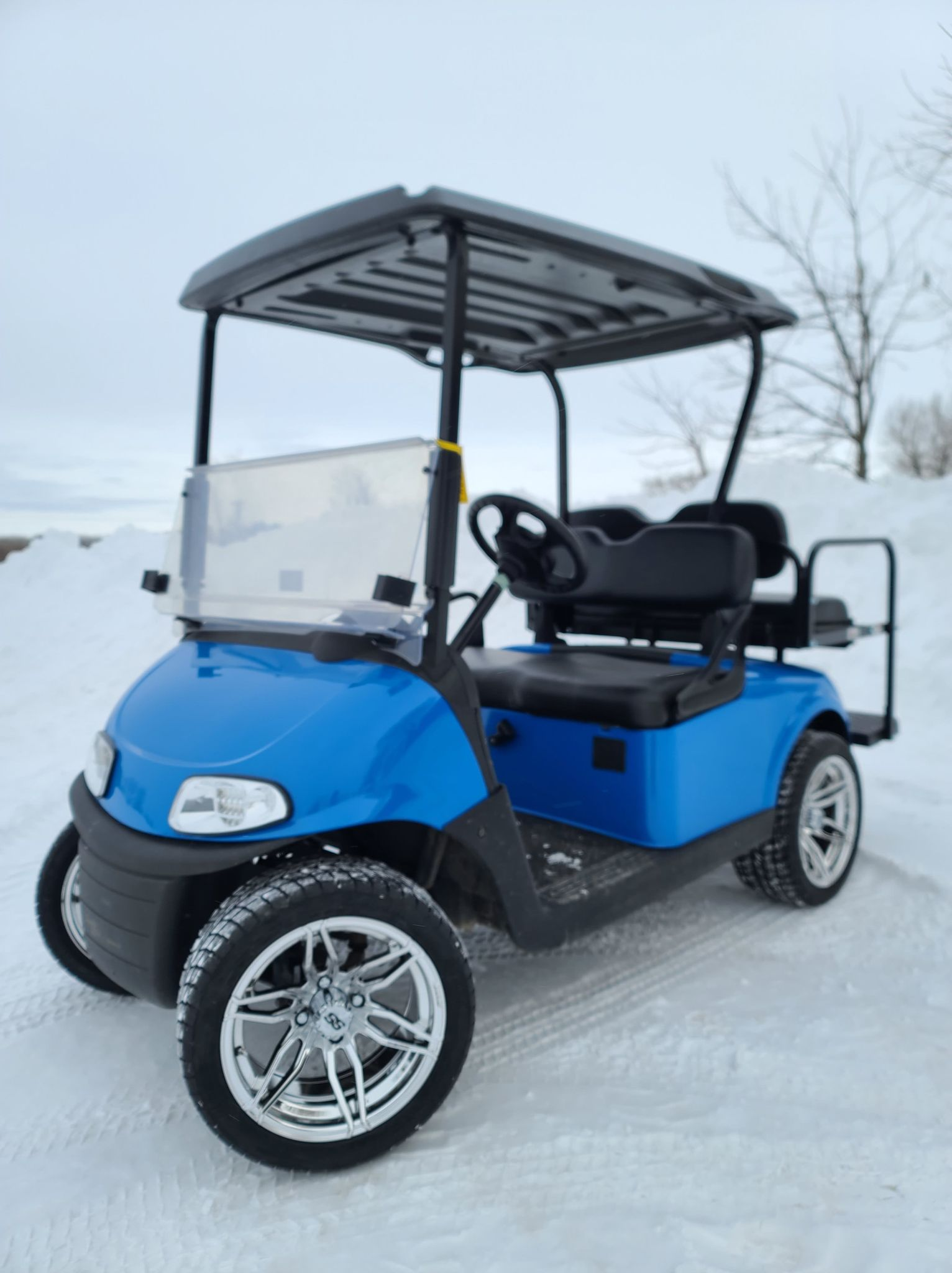 EZGO RXV Gas EFI Custom