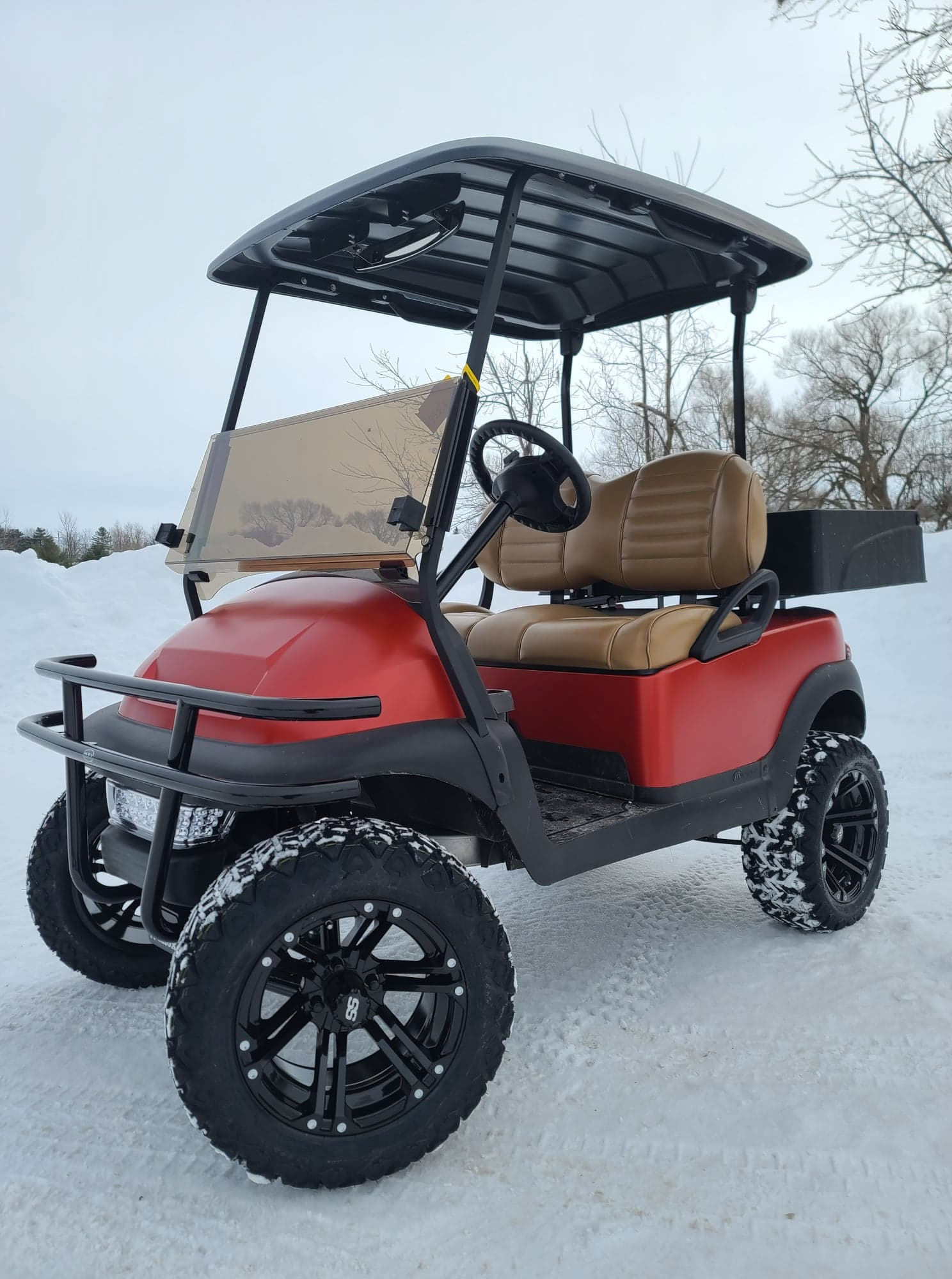 Club Car Precedent Electric Custom