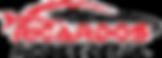 Logo Ricardos Mobile Detail-page-001.png