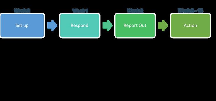 Innovation Survey Process