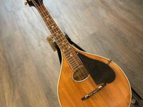 Levin Mandolin Modell 43. 2499:-