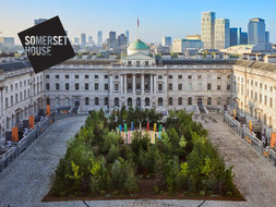 Somerset House Forest