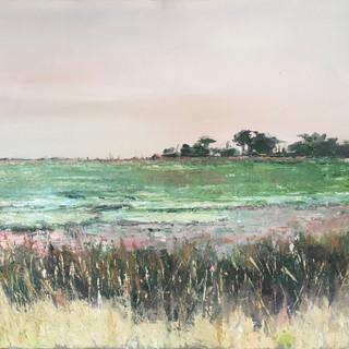 Salt marsh, Isle d'Oleron