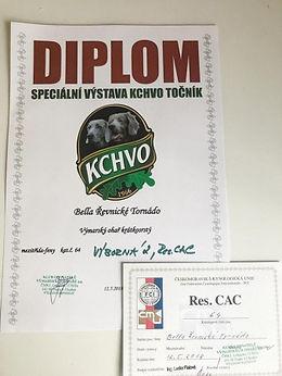 Bella KCHVO2.jpg