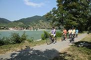 biking excursion on river cruise