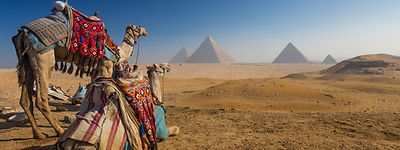 pyramids in desert with camels