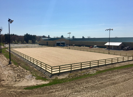 Hinkley Equestrian - A Three-Ring Success Story for Diamond W Contracting