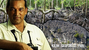 Mangrove destruction leaves other ecosystems at peril now – FreeMalaysiaToday