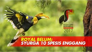 Royal Belum: Syurga 10 Spesis
