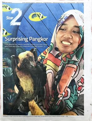 Pangkor: Know it, love it - Star2