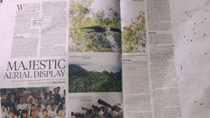 Raptor Watch Article on NST
