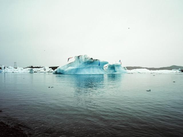 Plongeuse, 2013