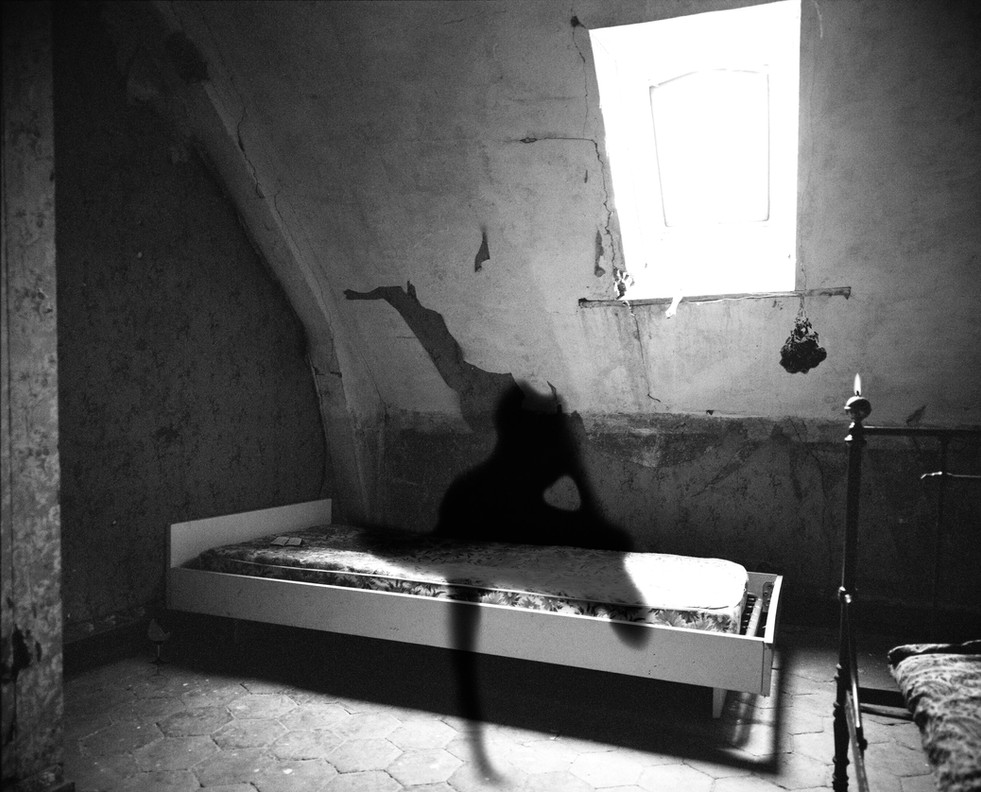 Memento mori #4, 2015