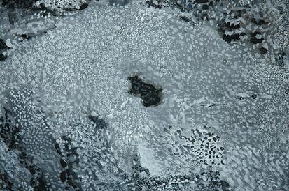 Femme de sable, 1979, détail