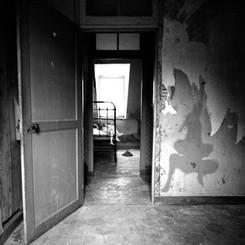 Memento mori #3, 2015