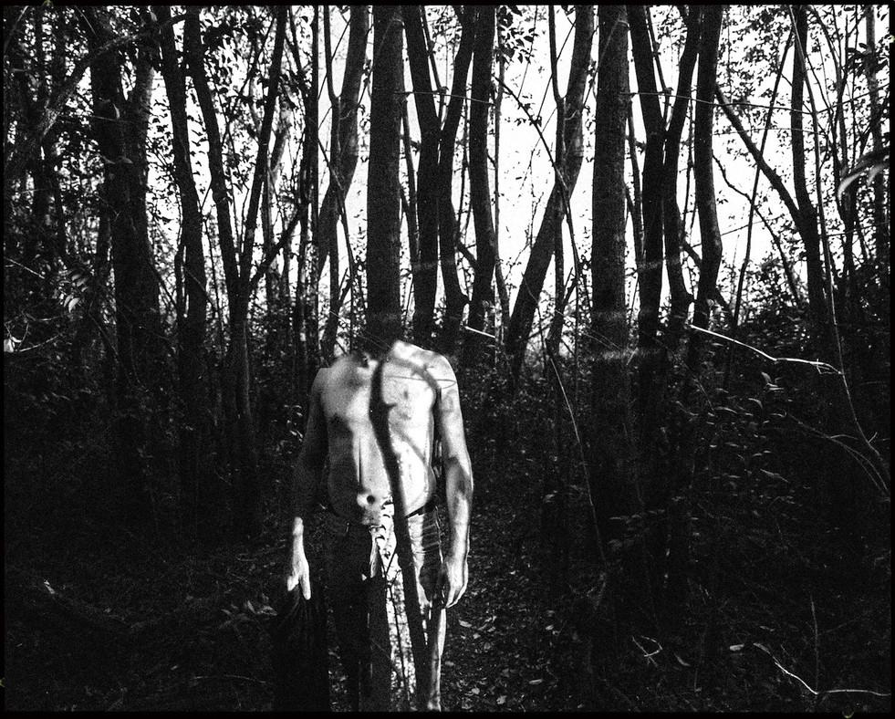 Autoportrait déchiré, 2014