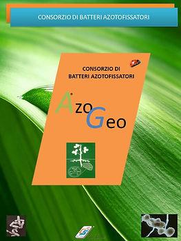Azogeo Catalogo.jpg