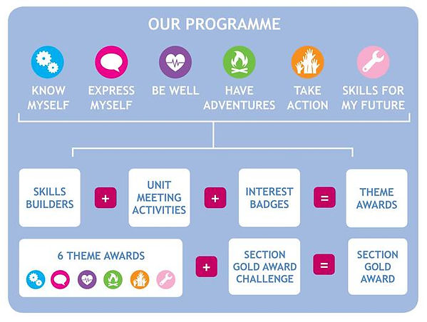 our-programme-overview.jpg